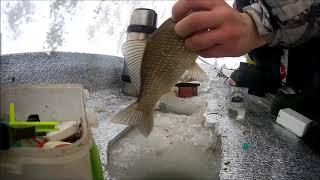 рыбалка в Карасуке оз.большое горькое  КАРАСЬ
