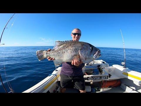 Perth Fishing Jiggin For Dhu Fish | Saltfix Fishing
