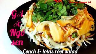 🇨🇦 Gỏi Ốc Biển Ngó Sen Chua Cay Ngon Tuyệt, Giòn Và Ngọt Lịm // Yummy Conch & Lotus Roots Salad.