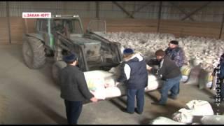 Минсельхоз обеспечил кормами домашних животных Бамута на всю зиму