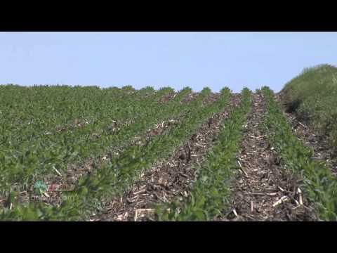 Soybean Planting #734 (Air Date 4/29/12)