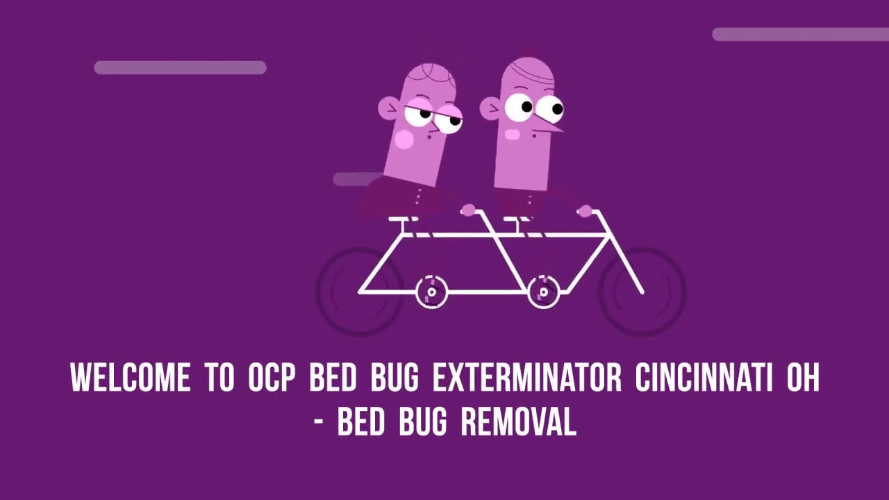 OCP Bed Bug Removal in Cincinnati, OH
