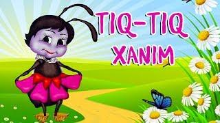 Tiq Tiq Xanim Azərbaycan Nagili Nagillar Youtube