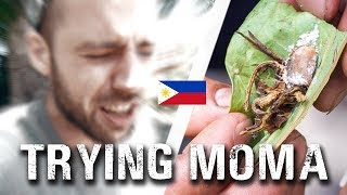 I WASN'T READY... Trying MOMA | First Week in the Philippines travel vlog