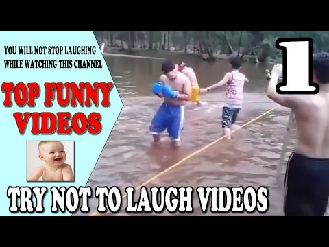 Top Funny Videos: Try not to laugh - Part 1