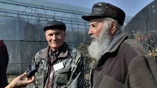 Интервью с виноградарями Приморского края в Плодовом питомнике ЛПХ Макаревич 21 октября 2018.