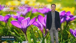 Februar-Frühling auf dem Höhepunkt: Knacken wir heute den Wärmerekord? (Mod.: Dominik Jung