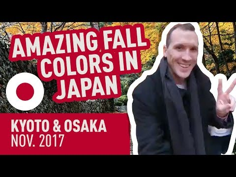 [HD] Amazing Fall Colors in Japan! Kyoto & Osaka Nov. 2017