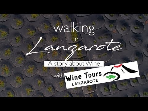 Wine Tours Lanzarote: a story about wine । Lanzarote । Canary Islands