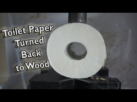 Toilet Paper Turned  Back to Solid Wood by Hydraulic Press