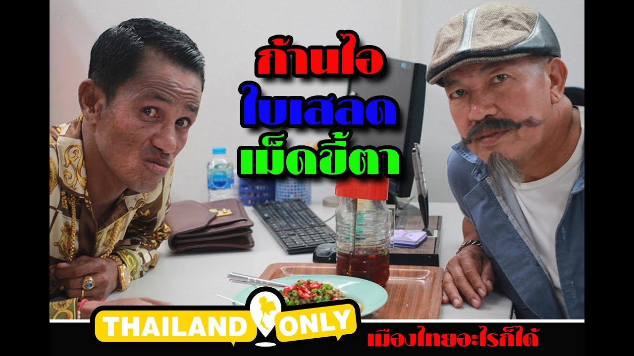 ก้านไอ ใบเสลด เม็ดขี้ตา แล้วกุญแจจะได้ไหม : ThailandOnly เมืองไทยอะไรก็ได้