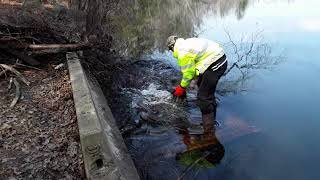 Clearing a Massive Clog on a Lake Drain Culvert