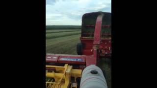 Double EE Farms Chopping Hay June 2014