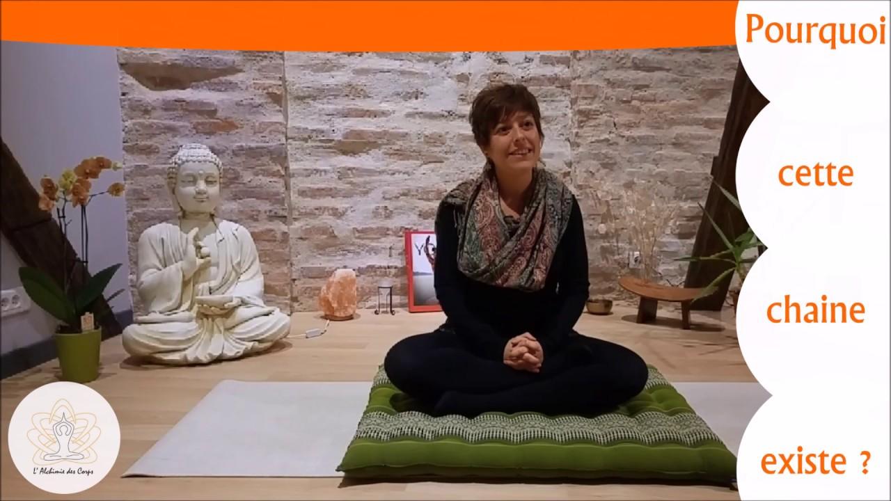 Pourquoi cette chaine de cours de Yoga?