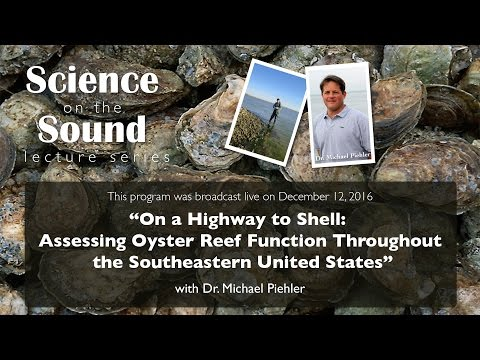 """Science on the Sound: """"On a Highway to Shell: Assessing Oyster Reef Function Throughout the SE US"""""""