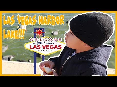 Max Goes To Las Vegas Harbor Lake | Max and Toys!