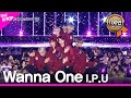 Wanna One, I.P.U. [Jeju hallyu Festival 2018]