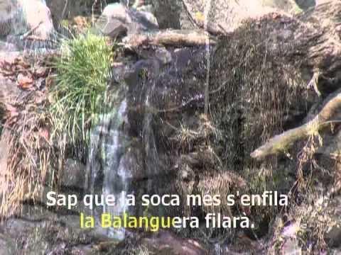 Maria del Mar Bonet- La Balanguera (Karaoke)