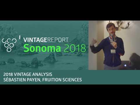 2018 Sonoma Vintage Report - Sebastien Payen - Vintage Analysis