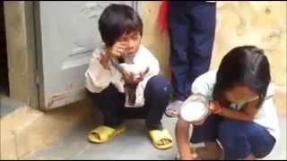 các cháu học sinh miền núi ăn cơm với muối trắng