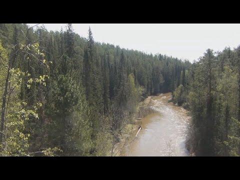 рыбалка на хариуса на таежных реках сибири