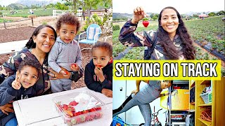 STAYING ON TRACK OVER THE WEEKEND/ STRAWBERRY FARM + MY BIRTHDAY WEEKEND!/ HOW MY WEEKEND WENT VLOG