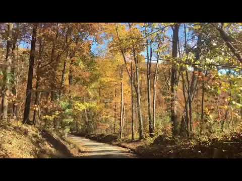 Driving Through Virginia Countryside In Autumn During Leaf Peak Fall Foliage Color