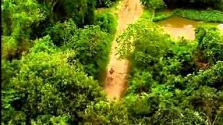 Acampamento de Férias II - A Árvore da Vida - Episódio do dia 28/01/11 - Parte 1