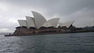 Chơi lớn- một mình trên tàu du lịch ngắm biển Sydney