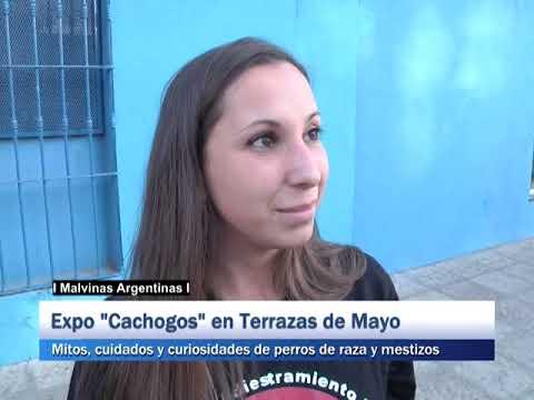 San Miguel Expo Cachogos En Terrazas De Mayo