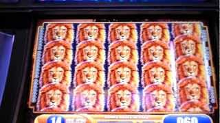 King of Africa 25 Free Spins Bonus WMS Slot Machine