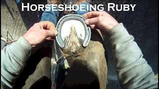 Rancher POV removing a horses horseshoe, giving a pedicure, and putting a new horseshoe on