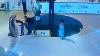 Holographic Projector 3D at Dubai Mall