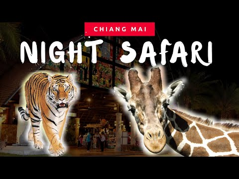 Chiang Mai, Thailand Travel Vlog: Doi Suthep & Night Safari