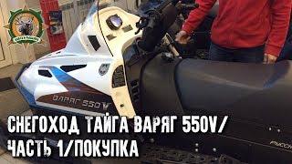 Снегоход Тайга Варяг 550V/Покупка/Русская механика/Часть 1