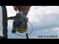 Shimano Sedona FI video