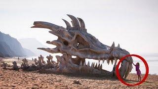 Ejderhalar Gerçekten Var mıydı?