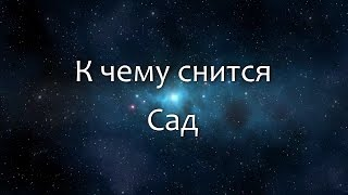 видео Народный сонник