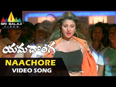 Yamadonga Video Songs | Nachore Nachore Song | Jr.NTR, Rambha | Sri Balaji Video