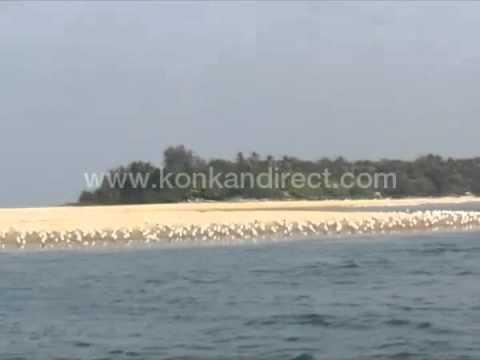 Seagull Island Tarkarli