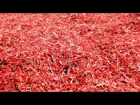 Red Chillies in Kalamna Market, Nagpur