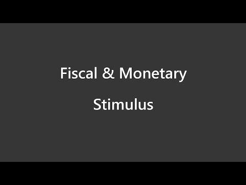 Flow of Money - Fiscal & Monetary Stimulus