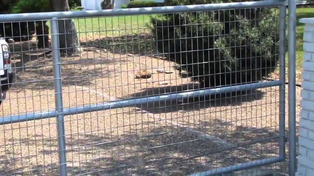 Stainless Steel Garage Gate Design Clifton NJ. (800)576-5919 - YouTube