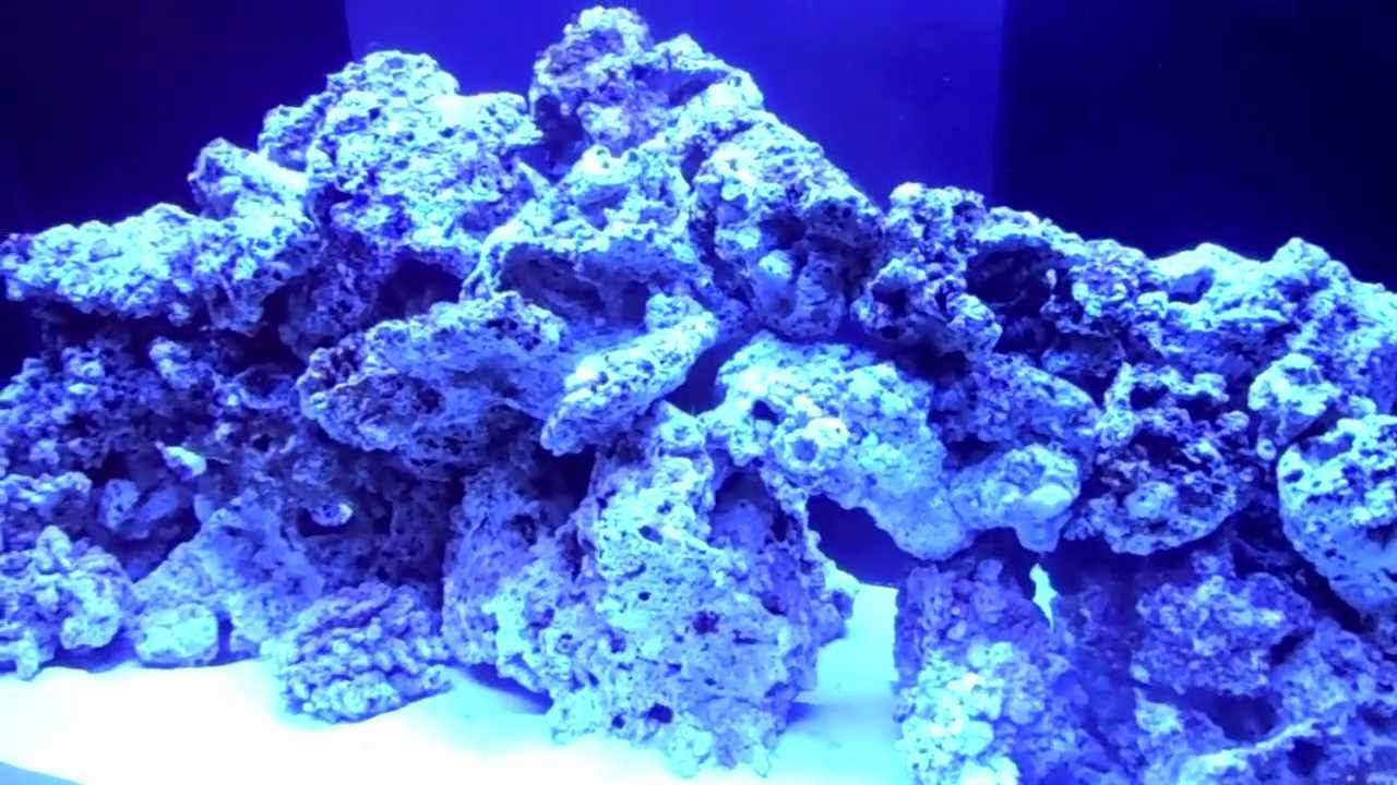 120 Gallon Saltwater Tank 2 Live Rock And Aquascaping Youtube