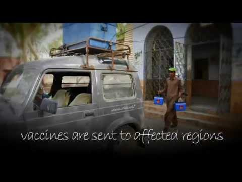 UNICEF - Polio: The journey of a polio vaccine