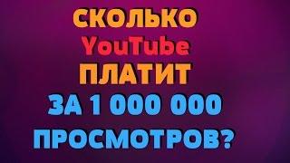 СКОЛЬКО YouTube ПЛАТИТ ЗА 1 000 000 ПРОСМОТРОВ?