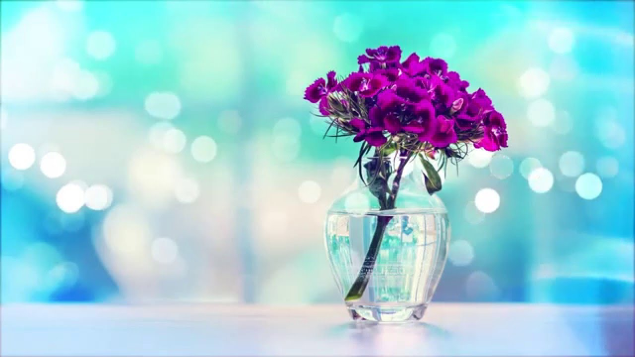 цветы фото в вазе