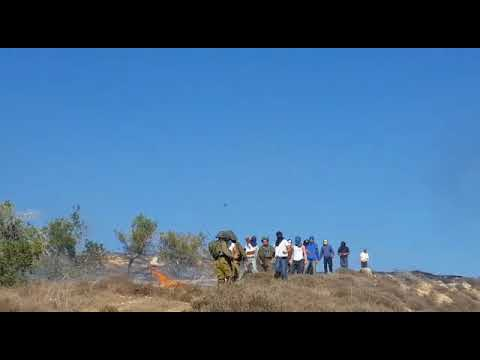 Masked settlers burning olive grove and throwing stones at Palestinians as soldiers stand by