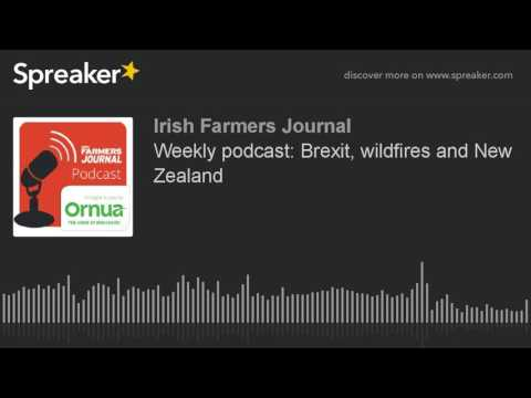 Weekly podcast: Brexit, wildfires and New Zealand