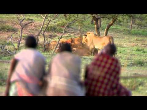 Cómo consiguen comida en Africa